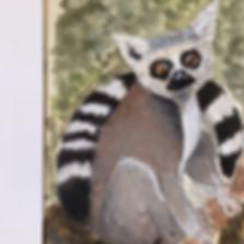 Day 17 - Ring-Tailed Lemur (Medium).PNG