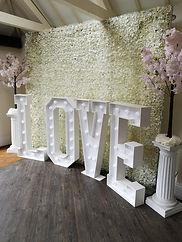 3 Metre Flower Wall