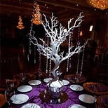 Manzanita Tree Winter Wedding