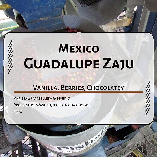 Mexico Guadalupe Zaju