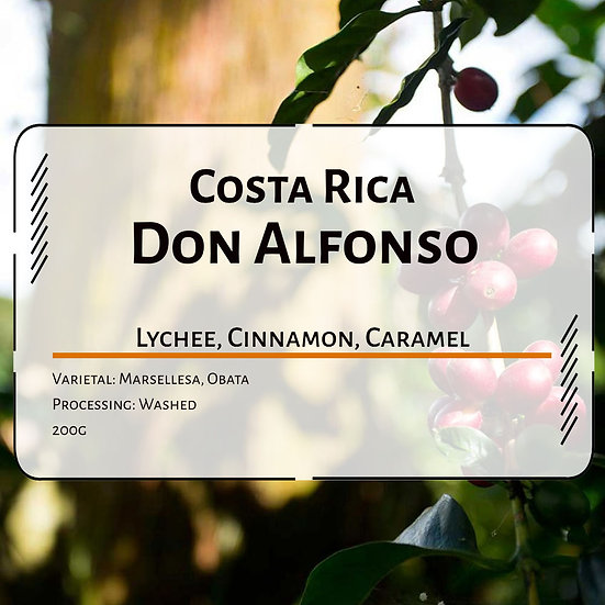 Costa Rica Don Alfonso