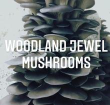 Woodland Jewel Mushrooms