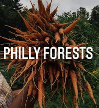 Philly Forests