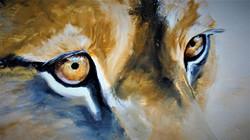 zoom lionne