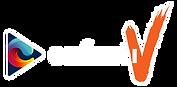 02 enfinitiV Logo Official-02.png