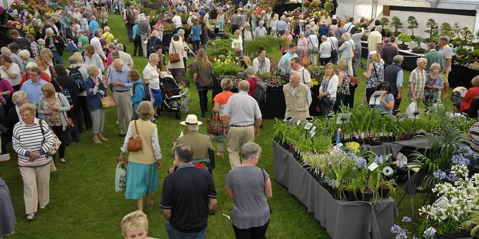 Blenheim palace flower show
