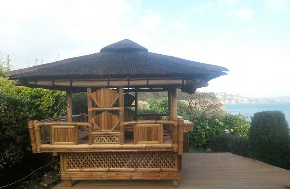 Tiki Hut with a view of the sea