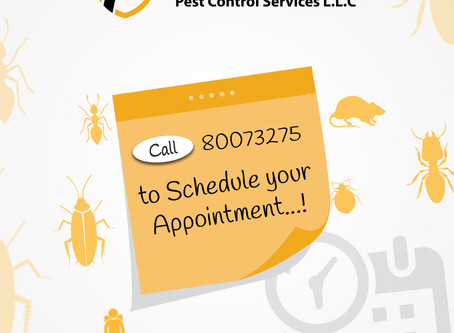 Scheduling a Pest Control Appointment