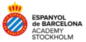 Academy_STOCKHOLM rectangular .jpg