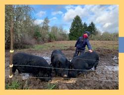 Farm School Open House Website flyer_edited
