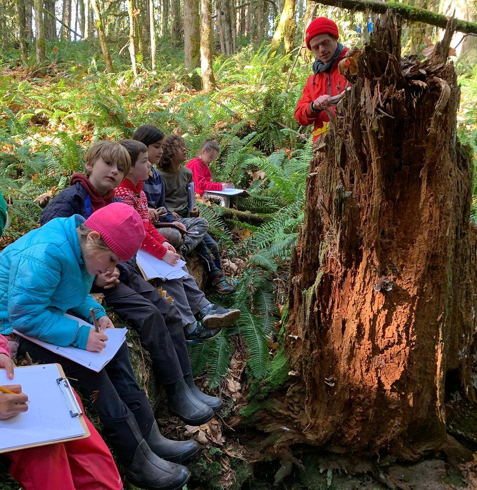 forest classroom.jpg