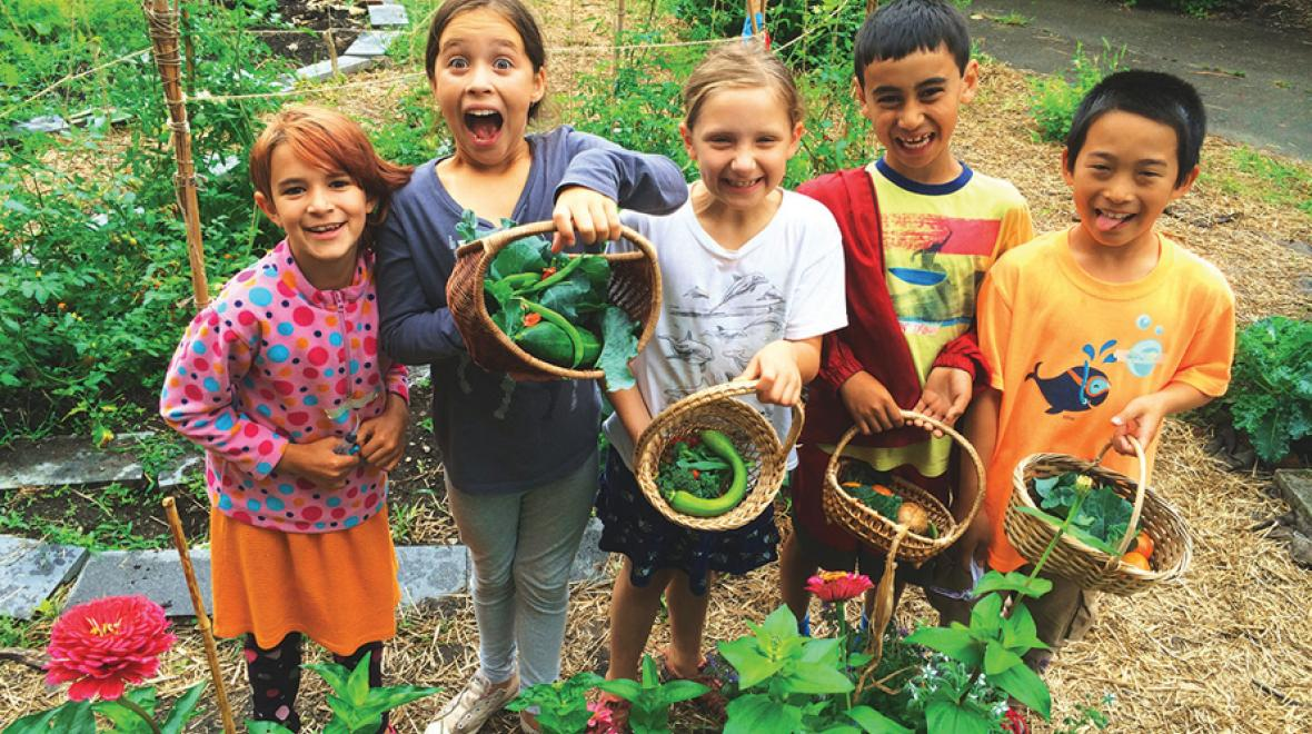 farm to table summer camp