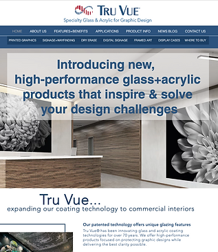 TruVue Website.png
