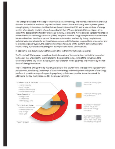 WHITE PAPER | Exergy Business