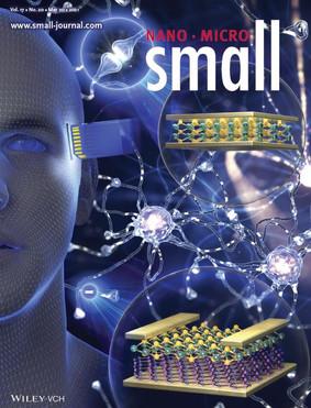 Small, Volume 17 (2021) 표지 논문