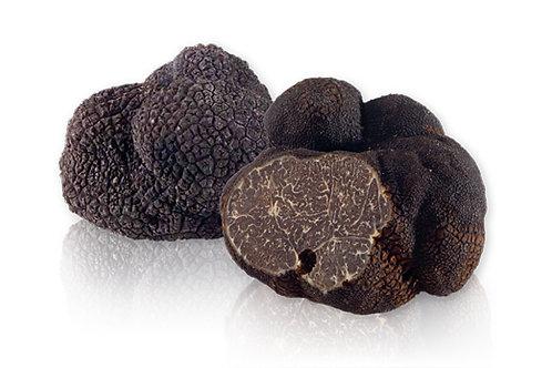 8 oz Black Winter Truffle(Tuber Melanosporum Vitt)