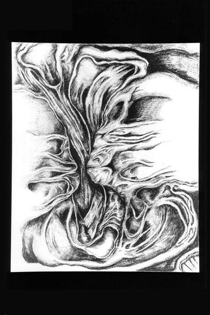 drawings 54