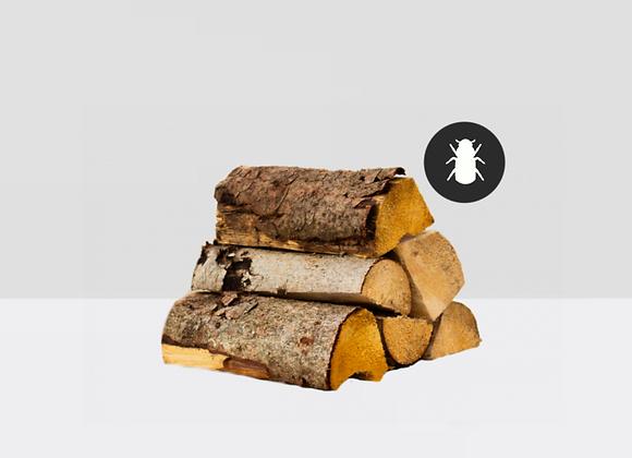 Frisches Brennholz (Borkenkäfer)