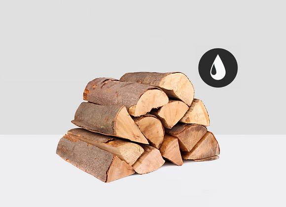 Frisches Brennholz (Eiche/Buche)