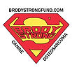 BrodyStrongFund.jpg