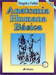 Livro Anatomia Humana Basica Dangelo E Fattini Pdf
