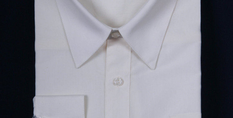 DS3001 I DANEL ELLISA DRESS SHIRT I IVORY