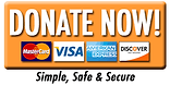 donate now easy buttoncc (2).png