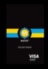 visa-quickread-12-13-18-600x857.png