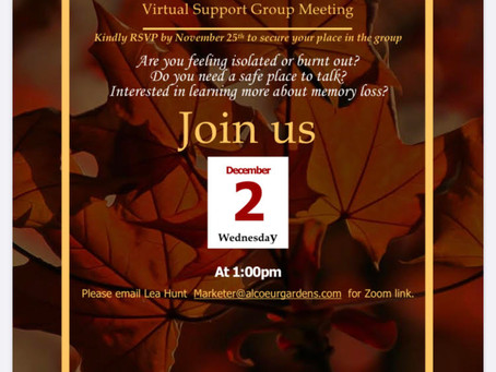 Virtual Support Group Meeting Dec. 2nd