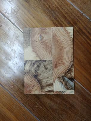 EGP Blue Stain Ponderosa Pine