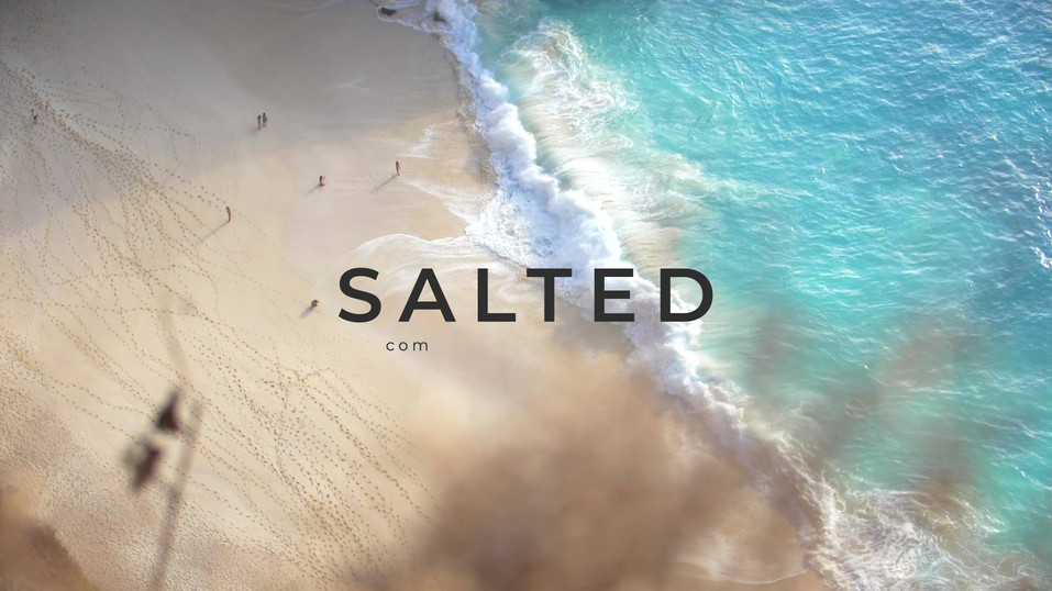 Salted Logo.mp4