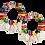 "Thumbnail: ""Goddess in Color"" Shells & Wood Earrings"