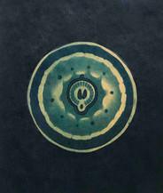 CYANOTYPE 04 copyright J Claase.jpg