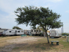 RV Campsite with Bench and Tree