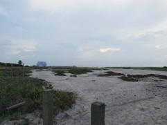 Laguna Madre Views