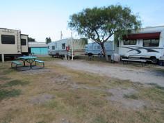 RV Campsite with Tree