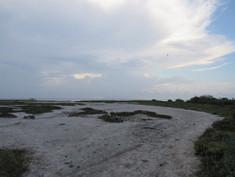 Laguna Madre