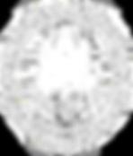 ISTD Logo, Dance Studio School in Orange County, CA, Tustin, Ballroom Latin Smooth and Rhythm, Syllabus, Goals, Achievement, Prestiege