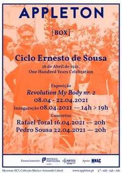Ciclo Ernesto de Sousa
