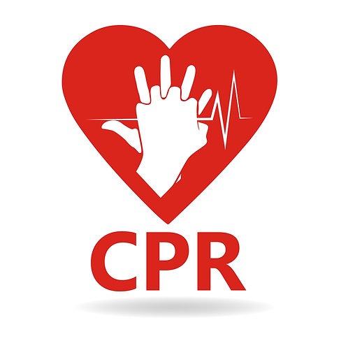 First Aid / CPR Training Fee