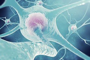neurons geotagged.jpg