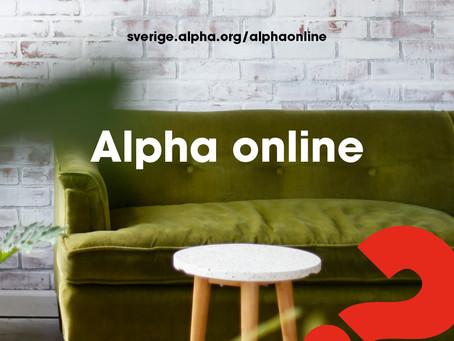 Alpha kurs