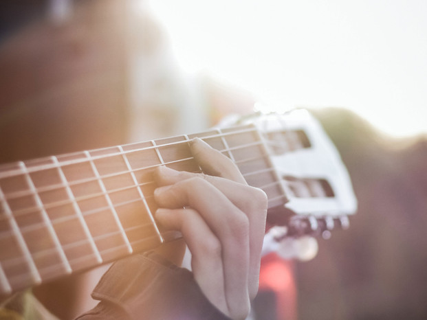 Live Music Serenade, i.e. Guitarist, Singer, Small Jazz Ensemble