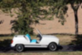 Renault_4L_e-Plein_Air_Concept3.jpg