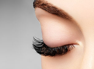Lashes and Brows Zurich
