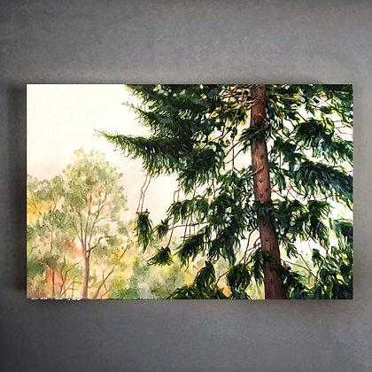 """Eternal Pine (36""""x 24"""")"""