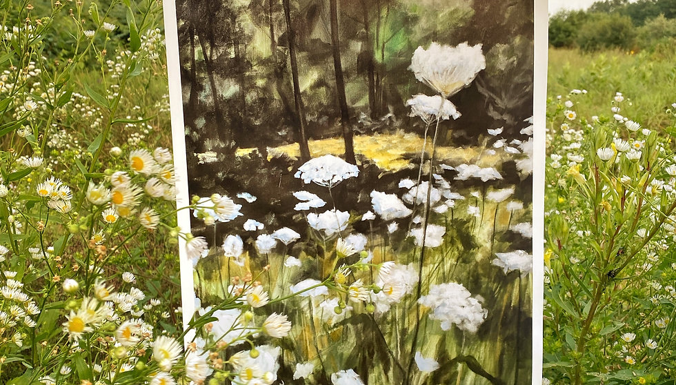 """Queen Anne's Lace - 11""""x14"""" Limited Edition Print"""