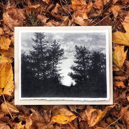 """Lovely Woods (8""""x10"""")"""
