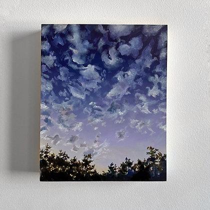 Swim In The Sky (8 x 10)