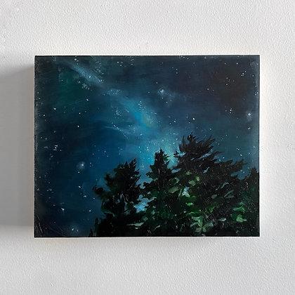 Star Gaze (8 x 10)